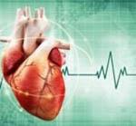 Нарушение ритма сердца: что это такое, классификация, причины, симптомы и лечение