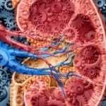 Повышенное артериальное давление и температура тела 37