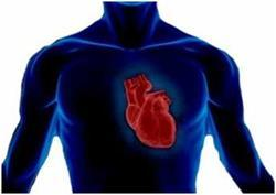 Что такое порок сердца у взрослых: сколько с ним живут, классификация, симптомы и лечение без операции